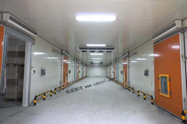 蒲江新阳光果业有限公司